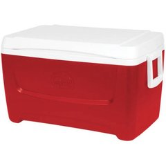 Cooler With Ice - Daily Service